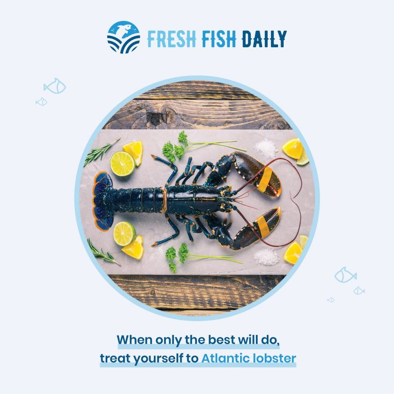 Social media template created for Fresh Fish Daily. The product image is in the middle of the graphic with supporting text below and the FFD logo above.