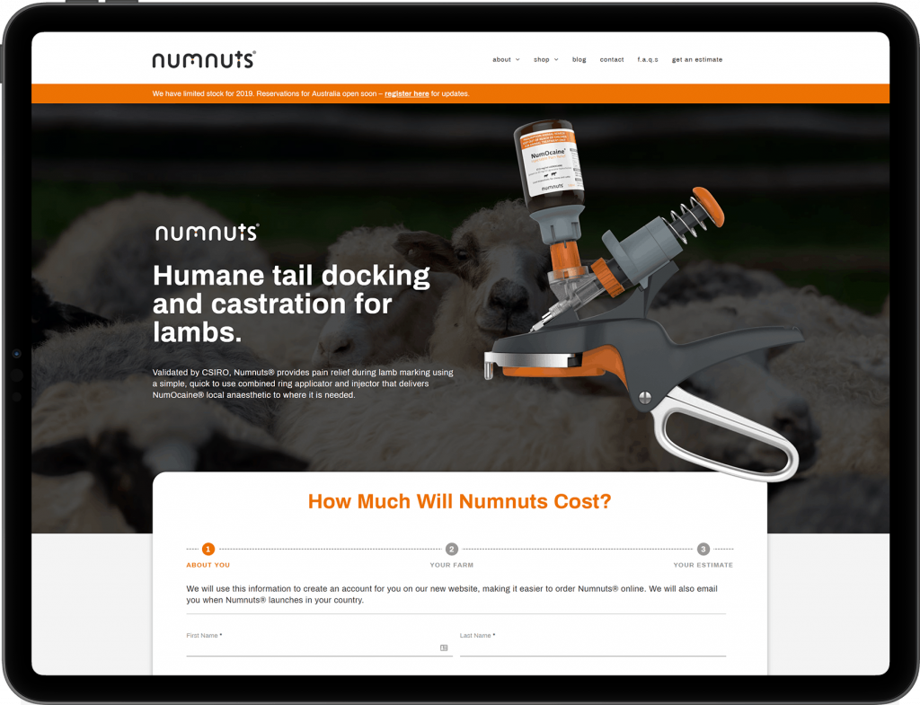 iPad with screenshot of Numnut's estimator form landing page